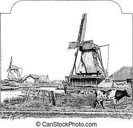 Mills, Zaandam (Holland), vintage engraving. - Mills,...