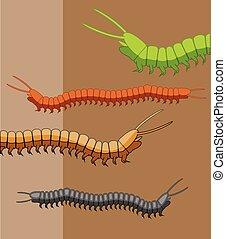 milpiés, gusanos