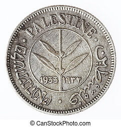 mils, vendemmia, -, 50, code, palestina