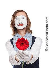 mime művész, noha, piros virág, -, gerber