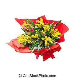 mimosa, fiori, mazzo