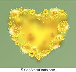 mimosa, forma corazón, flores, amarillo
