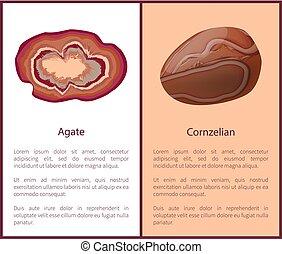 minéral, brown-red, carnelian, agate, cornelian, ou