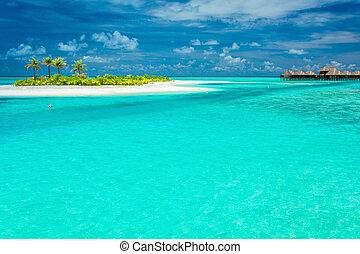 minúsculo, ilha tropical, com, coqueiros, em, maldives