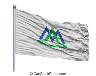 Minamialps City Flag On Flagpole, Japan, Yamanashi ...