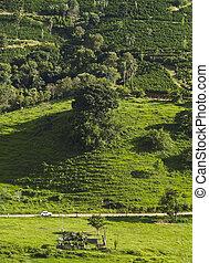 Minas Gerais Landscape, Brazil - Brazil, State of Minas...