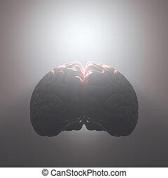 mindedness, abertos