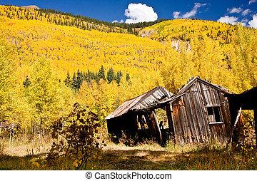Miner's Cabin in Autumn