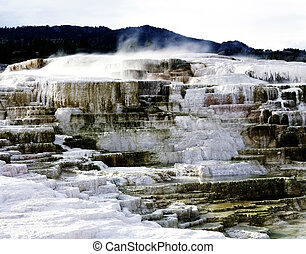 Minerva Terrace in Yellowstone National Park