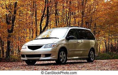 mini furgone