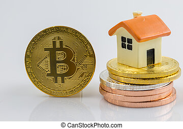Mini house with bitcoin isolated