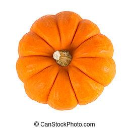 Mini Orange Pumpkin Isolated on White - Miniature orange...