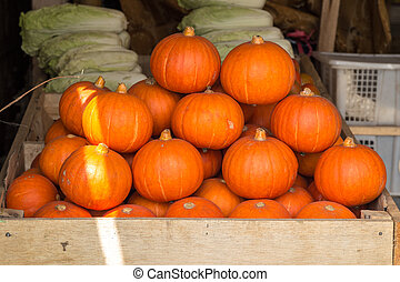 Mini orange pumpkins in bulk at the farmers market in the fall