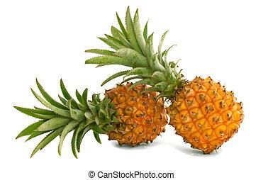 Mini pineapples - Two mini pineapples on a white background