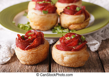 Mini pizza with salami and cheese close-up. Horizontal