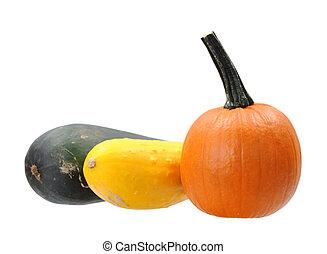 mini pumpkin and squash