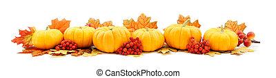 Mini pumpkin border - Mini pumpkin bottom edge border over...