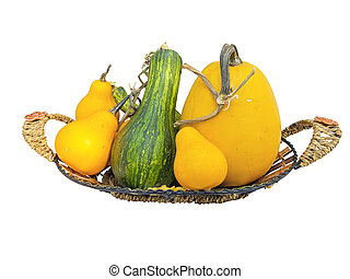 mini pumpkin in wicked wooden basket isolated on white