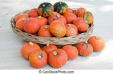 Mini Pumpkins In Basket