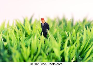 miniatura, figura, od, niejaki, biznesmen, w, zielona trawa