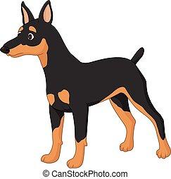 miniature, dessin animé, pincher, chien