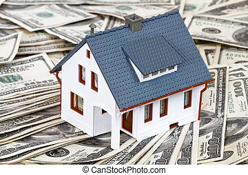 house and money - miniature house and money