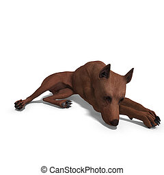 Miniature Pinscher Dog. 3D rendering with clipping path and shadow over white