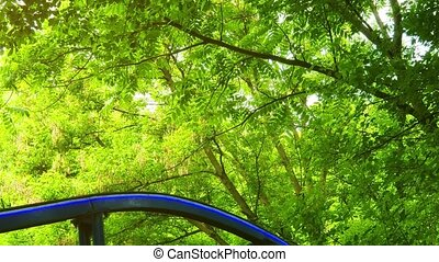 Miniature rollercoaster with colorful cars, passing closely beneath tree branches at this park in Ukraine.
