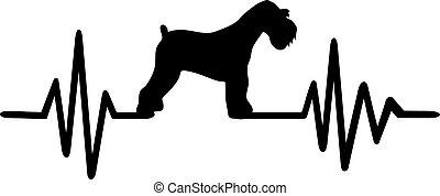 Miniature Schnauzer heartbeat - Heartbeat pulse line with...