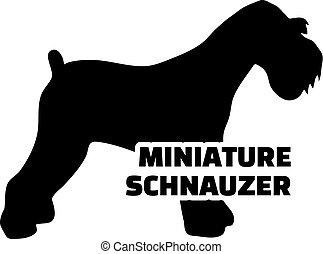 Miniature Schnauzer silhouette real word - Miniature...