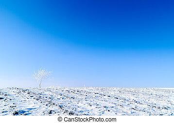 minimalismo, inverno