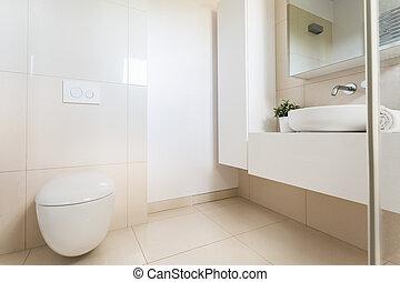 Minimalist, Badezimmer, Modern, Toilette
