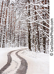Minimalist style winter landscape. Empty road winding in forest