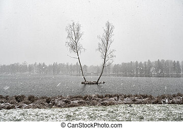 Minimalist winter landscape with two birch trees