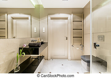Minimalistic bathroom with a black sink