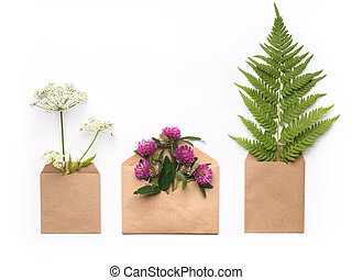 Minimalistic composition with herbs and flowers in craft paper envelopes on white background