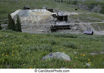 mining mill site - Mountain wildflowers old mining mill site