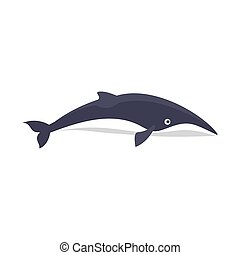 Minke whale icon, flat style