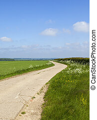 Minster Way and pea crop