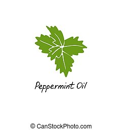 Mint green vector illustration. Hand drawn peppermint logo. Peppermint oil for cosmetic design
