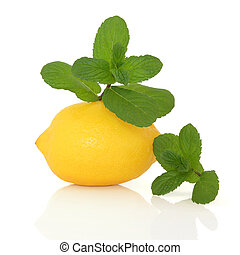 Mint Herb and Lemon Fruit