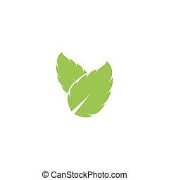 Mint leaf vector icon illustration