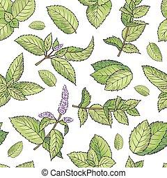 mint., modello, seamless, vettore, verde, mette foglie, fresco