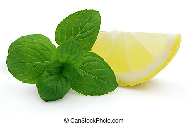 Mint with juicy lemon