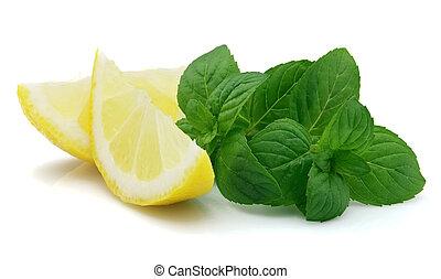 Mint with lemon