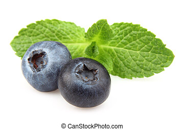 Mint with two berry
