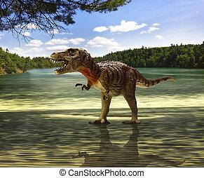 mirar, tyrannosaurus, alimento