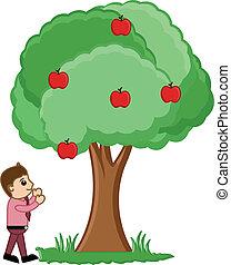 mirar, vector, árbol, hombre, fruits