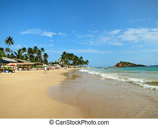 Mirissa beach, sri-Lanka - Mirissa beach with palm trees and...