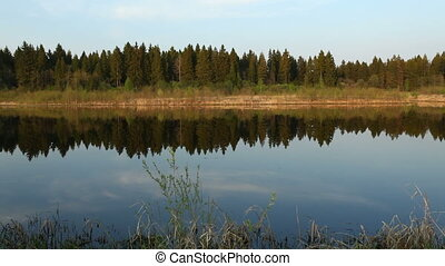 Mirror of calm water and forest